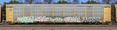 Tars/Diar/Saer/Verb/Agony (quiet-silence) Tags: graffiti graff freight fr8 train railroad railcar art tars aa aacrew diar saer verb agony dtc autorack bnsf ttgx987141