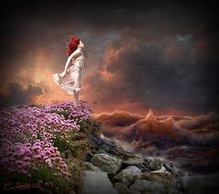 Unafraid (clabudak) Tags: storm maiden wind ocean waves shoreline flowers rocks stormy clouds