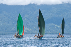 Green sails (Sven Rudolf Jan) Tags: milnebay papuanewguinea canoe canoeandkundufestival jan hasselberg