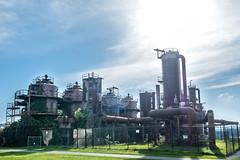 Gasworks Park (Tony Hoffman) Tags: gasworkspark places seattle testing xt2