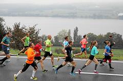 Hallwilerseelauf: 10 Kilometer-Lauf beginnt bei Regen