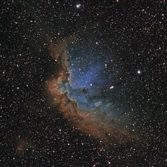The Wizard Nebula in the Hubble Palette (Astro Gabe) Tags: wizard wizardnebula nebula space stars gas hydrogen oxygen sulfur black emissionnebula ngc7380 wingedhorse mach1gto tmb130ss qsi ultrastar astrometrydotnet:id=nova1785025 astrometrydotnet:status=solved