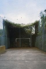 soccer field (flyerkat_L.E.) Tags: nobody soccerfield vienna city sport film analog nikon fm2 kodakultramax400