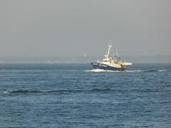 Arcachon, le bassin (laban.pascale) Tags: bassin arcachon aquitaine pêcheurs