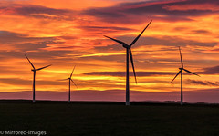 Solar Wind Energy (Mirrored-Images) Tags: clouds colour landscape light northeastengland northumberland outdoor silhouettes sky sunset windturbines