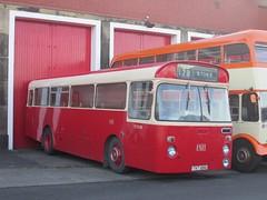 PMT SN1128 TVT128G Museum of Transport, Manchester on 128 (1280x960) (dearingbuspix) Tags: preserved pmt potteriesmotortraction tvt128g sn1128 manchesterchristmascracker manchesterchristmascracker2016 museumoftransportgreatermanchester museumoftransport