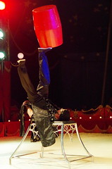 IMGP4863 (kanakacatherineb) Tags: cirque venise narbonne landri 2016 lions chameaux chiens dompteurs jongleur gymnaste