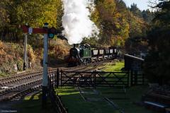 Parkend (Articdriver) Tags: 5541 forest woodland railway train steam locomotive prairie gwr deanforestrailway parkend