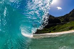 20150206-2186-Edit (cbabbitt) Tags: eastoahu hawaii makapuu oahu surf watersports water wave