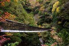 30Mitarai Valley (anglo10) Tags:   japan    valley autumnleaves   bridge