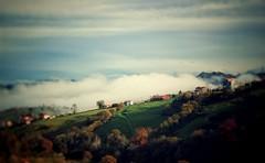 2016-11-20_09-27-36 (acorsinofdez) Tags: asturias niebla smog foggy nature naturaleza landscape paisaje autumn otoo