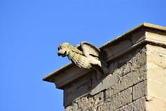 Claustre de la Seu Vella de Lleida (esta_ahi) Tags: lleida claustre claustro cloister seuvella ri510000156 catedral gtic gtico segri lrida spain espaa  grgola gargoyle