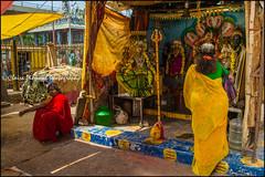 Shrine.  Mysore (Claire Pismont) Tags: asie asia inde india karnataka mysore mysuru shrine pismont clairepismont colorful couleur color colour travel travelphotography hinduism hindouisme hindu temple documentory
