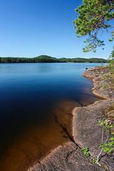 IMG_7954-1 (Andre56154) Tags: schweden sweden sverige wasser water see lake ufer himmel sky felsen baum tree