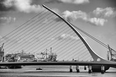 Samuel Becket Bridge (michael_hamburg69) Tags: ireland irland dublin irish bridge liffey samuelbecketbridge samuelbecket architecture brücke harp harfe architektur droicheadsamuelbeckett schrägseilbrücke architekt santiagocalatrava cablestayedbridge