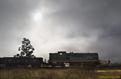 La locomotora y la niebla  -  The locomotive and the fog (ricardocarmonafdez) Tags: trenes trains locomotora locomotive niebla fog color maquina machine luz light sombras shadows shades sol sun clouds canon ricardocarmonadez 60d ricardojcf