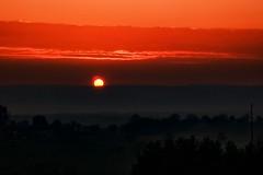 Infrared Therapy (yarin.asanth) Tags: infrared gerdkozik yarinasanth fog mist landscape rhine winter autumn flame red sun sunset