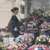 The Flower Market (garry_dav) Tags: matchpointwinner mpt516
