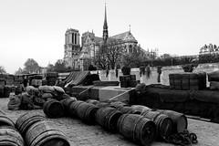 _DSC1652 (gérard Laurent) Tags: paris seine quai notredame cathédrale tonneaux péniche sony sonya7rm2 sonyfe28mmf2 noiretblanc blackandwhite île de la cité