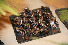 Warhammer Fantasy Battles Dwarves Army regiment (szogun000) Tags: game canon army force dwarf models gaming figurines warhammer figures tabletop dwarves regiment gamesworkshop wargaming whfb warhammerfantasybattles canoneos550d canonefs18135mmf3556is