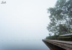 Westensee in thick Fog (Luziferian) Tags: mist misty fog landscape haze foggy hazy kiel vapor schleswigholstein minimalsim westensee