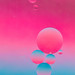 pink bubbles (explored 2015-10-12)