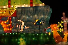 DSC02412 (oliveplum) Tags: art night singapore sony celebrations lantern midautumn marinabay gardensbythebay sg50 leica60f28macro
