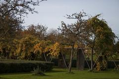 Floriade_251015_24 (Bellcaunion) Tags: park autumn fall nature zoetermeer rokkeveen florapark