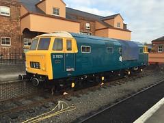D7029 on Display in Kidderminster Town 02/10/15 (Wolfie2man) Tags: severnvalleyrailway hymek d7029
