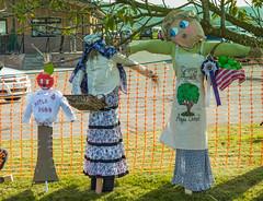 Photo of Apple Festival Scarecrows
