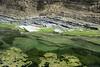 Crocodile River (|M| Almeida) Tags: río river ecuador paisaje clear tuesday sur seco crocodiles transparente theenchantedcarousel