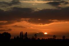 Pitt Meadows Sunset (Ian Threlkeld) Tags: sunset canada nature landscape nikon bc britishcolumbia explore pacificnorthwest westcoast pnw irt nikonphotos pittmeadows beautifulbc sunscapes canadianlandscapes nikonphotographer nikonphotography ridgemeadows explorebc d7000 nikonvancouver neavesroad mynikonlife