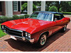 Buick Special/Skylark/GranSport Verdeck 1968 - 1972