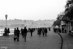 ((mig)) Tags: people bw blancoynegro gente walk gijn asturias bn paseo martimo xixn
