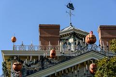20151008_Disneyland_170 (petamini_pix) Tags: jackolantern disneyland hauntedmansion neworleanssquare