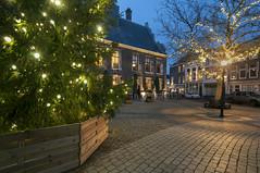 Schiedam, Grote Markt (Jan Sluijter) Tags: christmas holland tree netherlands weihnachten square navidad nol markt natale stadhuis kerstmis kerstboom schiedam 2015 visitholland