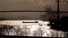 Hamburg - Köhlbrandt (MiBro) Tags: light backlight deutschland licht hamburg elbe gegenlicht köhlbrandtbrücke köhlbrandt