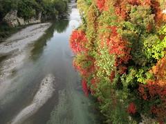 Autunno sul Natisone (Eli.b.) Tags: fiumi autunno acqua piante colori automne