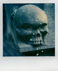 Mr Skully (Paul A. Rizer) Tags: sx70 impossiblecolourfor70 022016 polaroid impossibleproject instant instantshot roidweek 2016 mrskully graveyard cemetery skull graveornament edinburgh scotland gg
