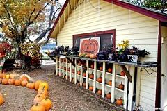 Farmer's Market (--Anne--) Tags: farmersmarket fruit vegetable stand pumpkins autumn fall country halloween display pumpkin