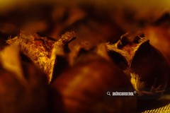 Chestnut in Oven (akincansenol) Tags: 500px autumn chestnut closeup cook delicious food macro oven snack warm stock