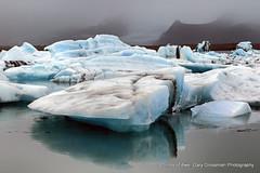 Jokulsarlon (Gary Grossman) Tags: jokulsarlon jkulsrln glacierlagoon garygrossmanphotography shotsofawe glacier landscape lagoon atlanticocean ocean atlantic iceland travelphotography reflection cold ice blueice icebergs