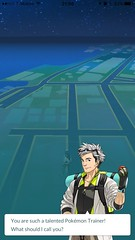 Pokémon GO (UX Examples (Mobile Games)) Tags: 2016 pokémongo niantic personalization profile