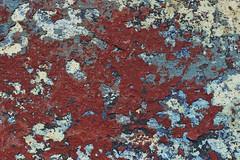 Coque destocke (Michel Seguret Thanks all for 9.200 000 views) Tags: sete bateau boot boat macro peinture detail michelseguret nikon d800 pro couleur color colorful coque