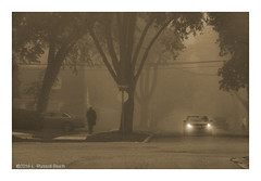 Silent Hill (TooLoose-LeTrek) Tags: olympusomdem5ii fog city urban mist haze headlights atmospheric climatic neighborhood pedestrian eerie