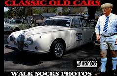 Walk socks and old cars  3 (The General Was Here !!!) Tags: nz newzealand nelson newzealandwalksocks socks summer sommer shorts sox snapshot sydney auckland abovethekneeshorts australia auto bermudasocks bermudashorts kiwi kneesocks kiwiana knees kniefstrumpt knee longwalksocks longsocks legs longhose oldschool overthecalfdresssocks overthecalfsocks clothing classic canon coat car carshow compresionsocks tubesocks walkshorts walksocks walkers wellington walker dunedin golfsocks golfers golffashion golf golfer 1980s 1970s retro tweed tweedcap old vintage vintagecar vehicles cars outdoor canberra menswear menslongsocks british jag 1960s vehicle