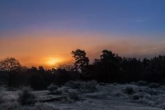 Sonnenaufgang im Hochnebel (Jrgenshaus) Tags: deutschland wahner heide sonne frost winter nebel verlaufsfilter wahnerheide day cloudy
