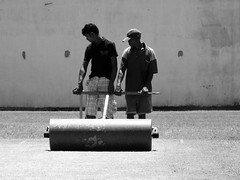 between innings - rolling the pitch (deeptone_pics) Tags: srilankajuly2012 srilanka cricket cricketpitch roller groundstaff turf grass wicket sport field