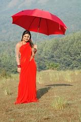 South Actress Deepika Das Hot in Red Sari Photos Set-5 (17)
