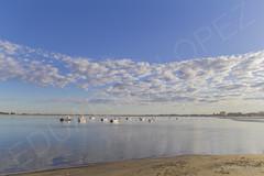 MARINA (eldelosreyes) Tags: sanlcardebarrameda bonanza mar rioguadalquivir barcas nubes clouds azul blue marina calma serenidad